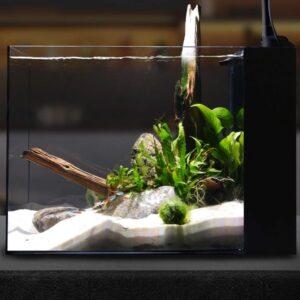 Waterbox Aquariums Peninsula Mini 15